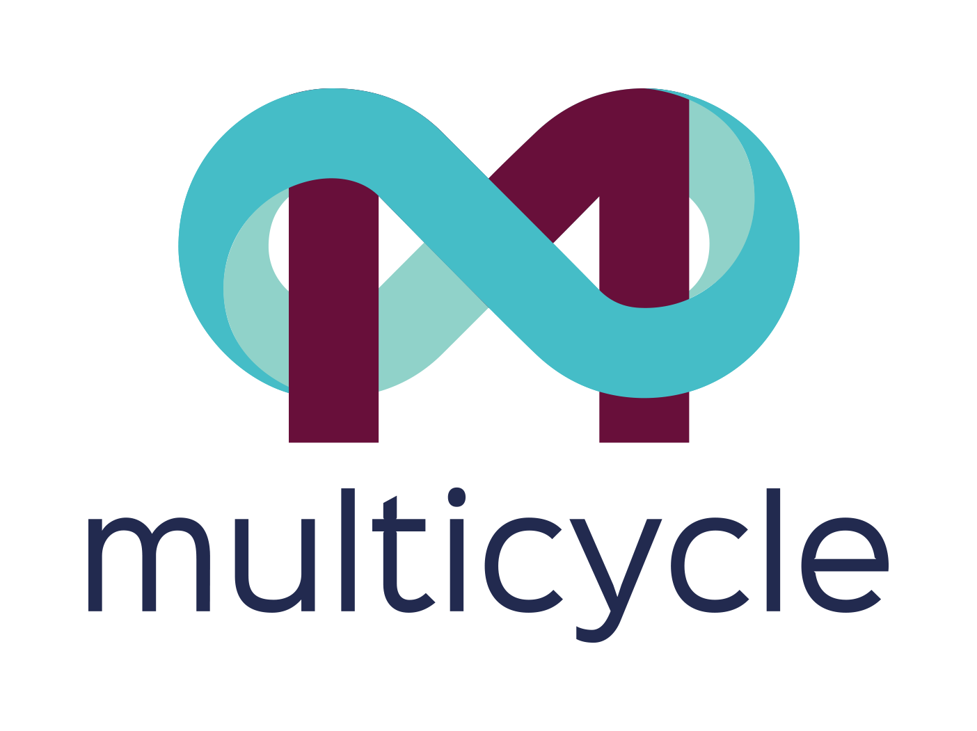 Link to Multicycle project